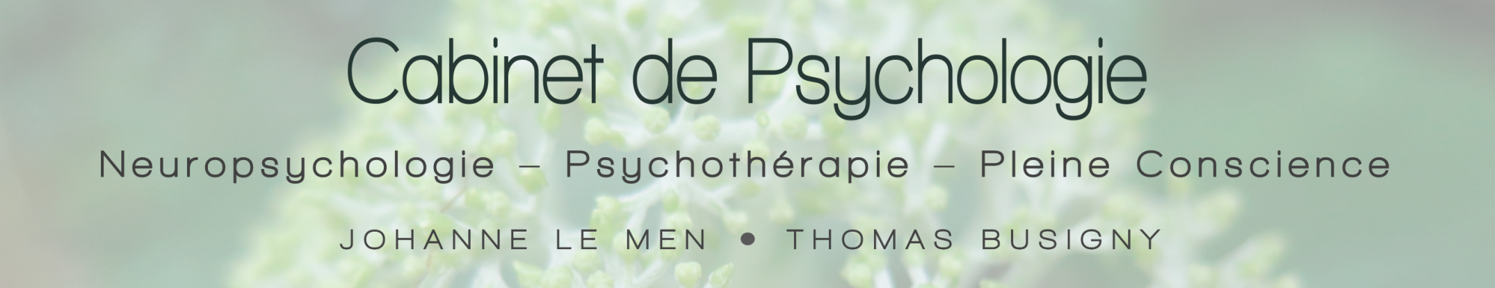 Cabinet Neuropsychologie Toulouse